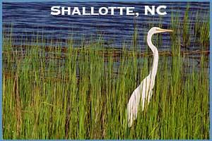 Shallotte, NC